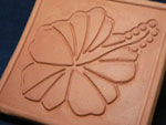 hibiscus[1].jpg